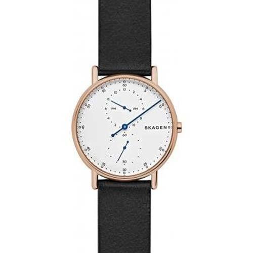 Мужские часы Skagen SKW6390